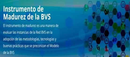 instrumento-de-madurez-de-la-bvs-una-herramienta-al-servicio-de-la-mejora-continua-de-las-instancias-de-la-bvs